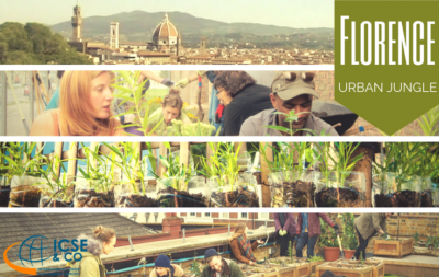 florence urban jungle - youth exchange - eramsus+